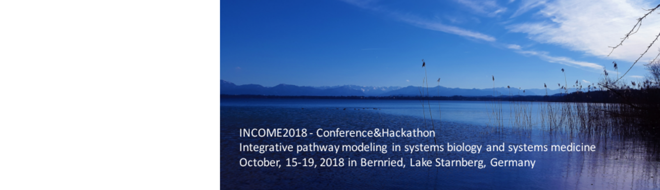 INCOME - Collaborative modeling network in systems medicine